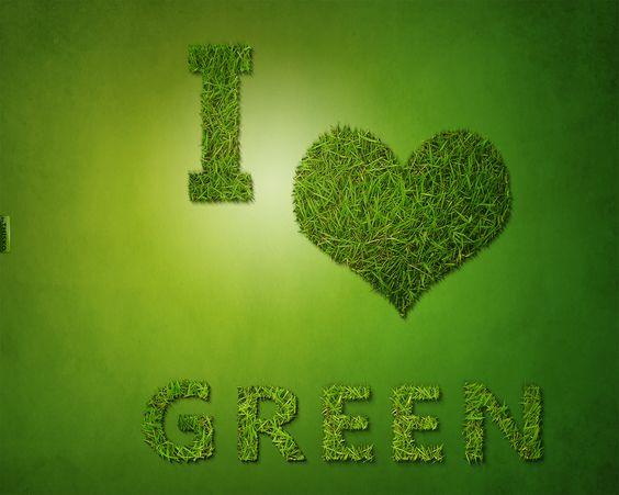I love Green ~ Need I say more.: