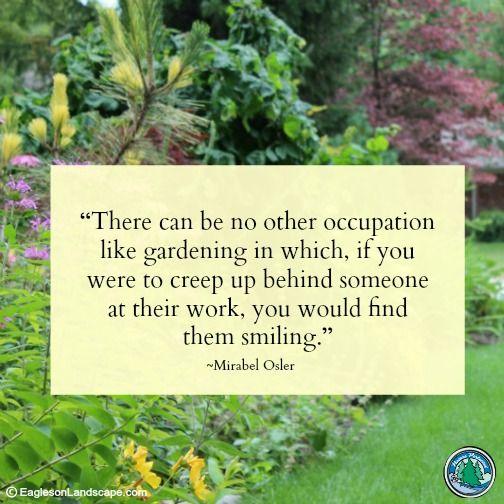 Flowering Wisdom With Images Garden Quotes Garden Landscape