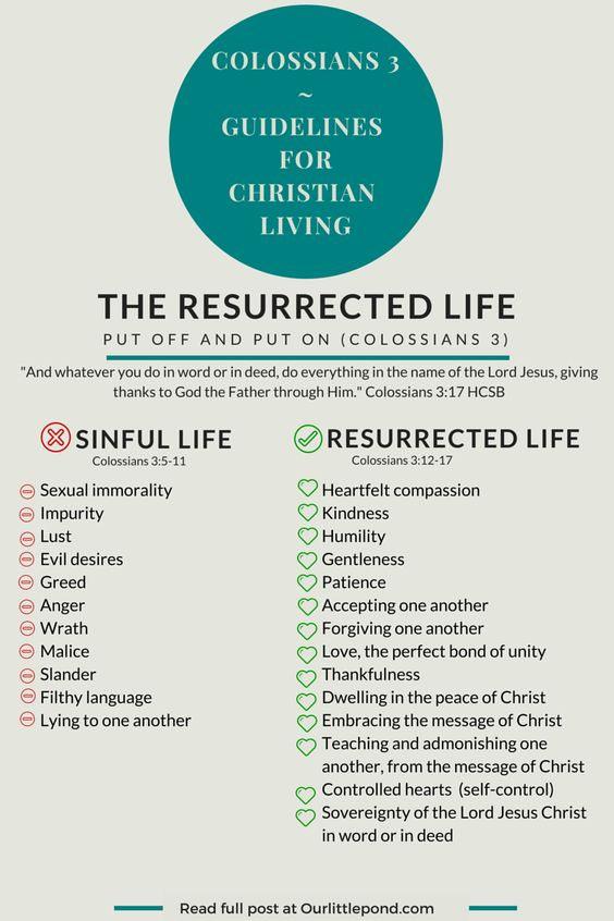 The Supremacy of Christ: A Study of Colossians