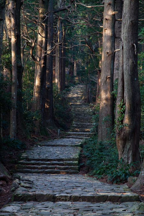 If I were Snow White, I'd have a stone stepped path leading up to my summer cottage in the forest. c: