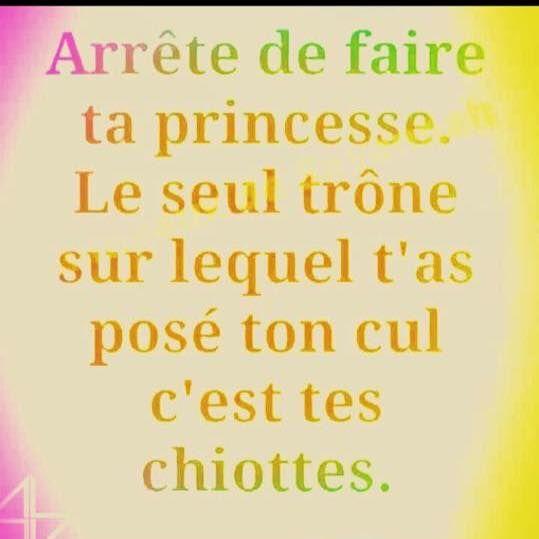 Arrête de #faire ta #princesse le seul trône sur lequel t'as posé ton #cul c'est tes #chiottes ! #blague #rire #humour #rires #drole #drôles #droles #blagues #humours #mdr #lol