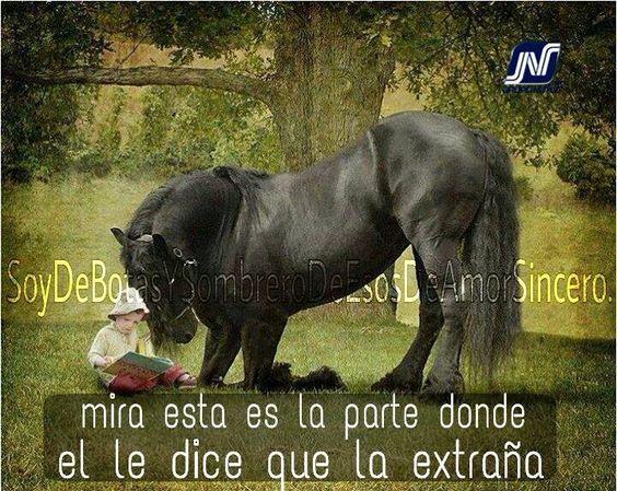 Un caballo sabe que es el amor y el perdón