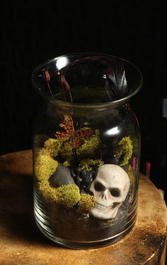 Taxidermy terrarium butterfly antique skull moss vase home for Skull home decor