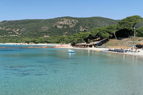 Santa Giulia and Palombaggia, famous beaches with calm and turquoise water, white dunes of fine sand and pine trees @ Porto-Vecchio - Corsica
