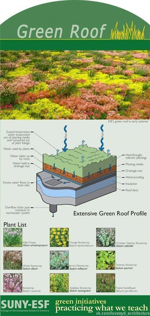 Green Roofs And Great Savings Green Roof Roof Garden Roof