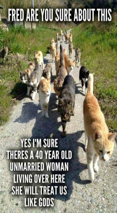 At my rate..... this shall be me they are sniffing out