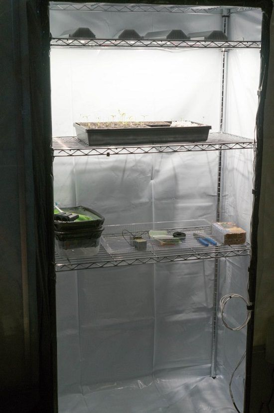 12 Diy Grow Tent Ideas For Indoor Gardeners Grow Tent Diy Tent Grow Boxes
