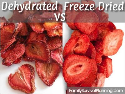 Freeze-Dried vs Dehydrated Foods