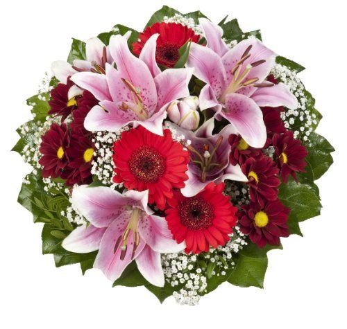 Blumenstrauß von Amazon.de Pflanzenservice. Eine Geschenkidee von https://Geschenkling.de - Immer rechtzeitig passende Geschenkideen für deine Familie, Freunde und Kollegen.