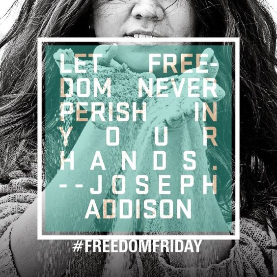 #josephaddison #freedomfighter #enditmovement