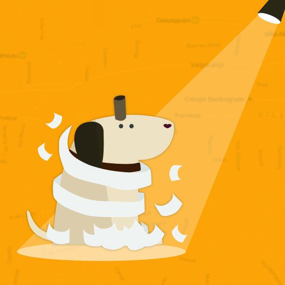Refuerza el vínculo con tu perrito dedicando un tiempo diario para jugar con él. Así evitarás que se aburra, muerda tu ropa interior, zapatos y destroce muebles y paredes.