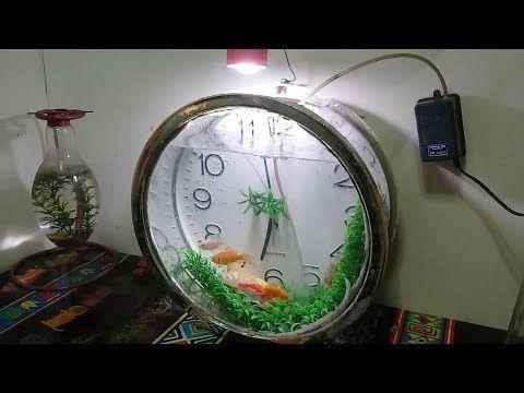 Aquarium Unik Dari Jam Rusak Youtube Desain Daur Ulang Akuarium