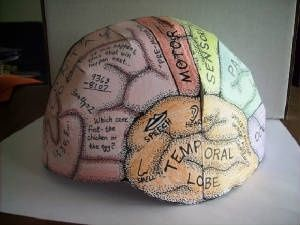 Cut-and-assemble brain hat. Awesome for older kids and anatomy - free printable download. by shawn
