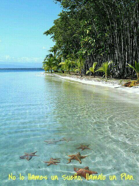 Isla de las estrellas, Bocas del Toro  -  Panamá #Wanderlust #America #26