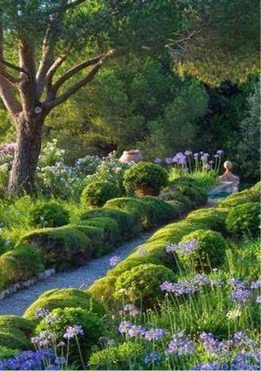 Im Garten Garten Mediterranean Garden Evergreen Garden Garden Design