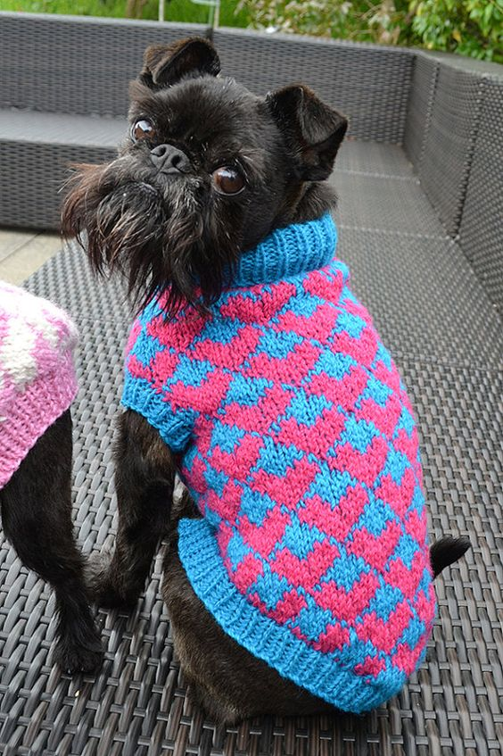 Knitting Patterns For Dog Sweaters : Knitting patterns, Dog sweaters and Sweaters on Pinterest