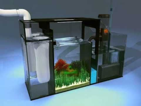Aqueon ProFlex Sump Refugium Setup - YouTube | Tanks ...