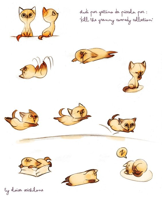 Illustrations... Etude :  petit chat (Eloïsa Scichilone)   SOOOOO cute... I wish I had this talent