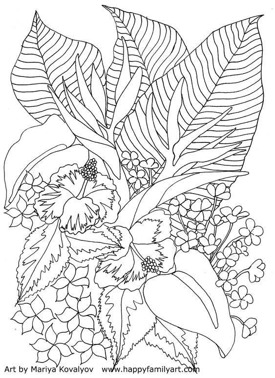 """Tropical Flowers Coloring Page--Please make sure to know that all of these coloring pages are for personal use only, an please don't use them any other way 