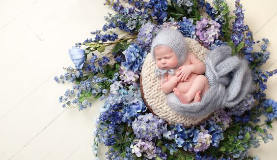 Lindsay Walden Photography, dfw newborn photography, baby girl in wreath: