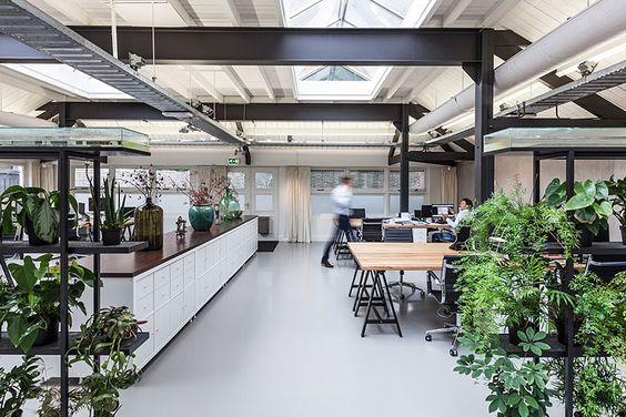 офис в эко-стиле