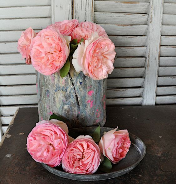roses and zinc