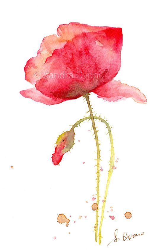 Reproduction Aquarelle Coquelicot - Peinture de fleur rouge et vert - 10x15 cm avec passe-partout, Prêt à encadrer