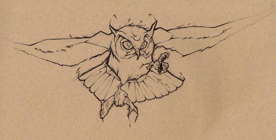 Owl Sketch by Daniel Dufford, via Behance