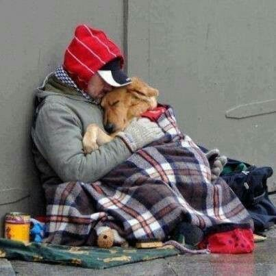 Awww....to love a dog. ;)
