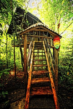 Wordless wednesdays insane treehouse hotels a hotel for Costa rica tree house rental