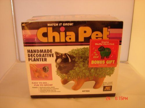 Chia Pet Kitten New with the Box Sealed , http://www.amazon.com/dp/B004M5WJ2Q/ref=cm_sw_r_pi_dp_0e9dsb19B54KJ