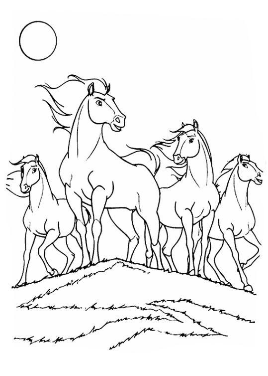 Pin Von Villca Antonella Auf Coloring Pages Malvorlagen Ausmalbilder Pferde Zum Ausdrucken Pferdezeichnungen