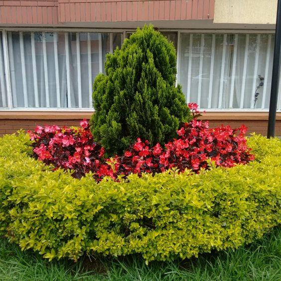 FyJ en Bogotá