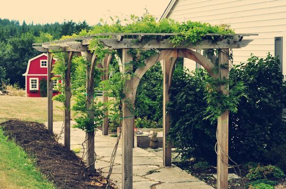 Image result for pergola over path