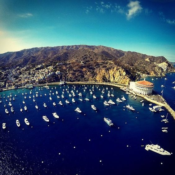 Rumor has it, there is a whole lot of #gold buried somewhere on here....Avalon, Catalina Island, California. Photo thanks to @kevinmtaylor #buried #treasure #tunnels #CA #richandfamous #catalina #winemixer #powpow #stepbrothers #yachts #luxury #island #pacific #ocean #losangeles #dronesdaily #drones #dronestagram #aerial #travel #discover #explore #saltlife #droneoftheday #dronesetc #gopro #goprooftheday #dji @djiglobal @dji