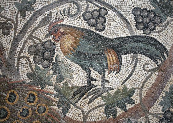 Rooster mosaic from the excavations of Antioch, now in the Worcester Art museum (A.D. 526-540).