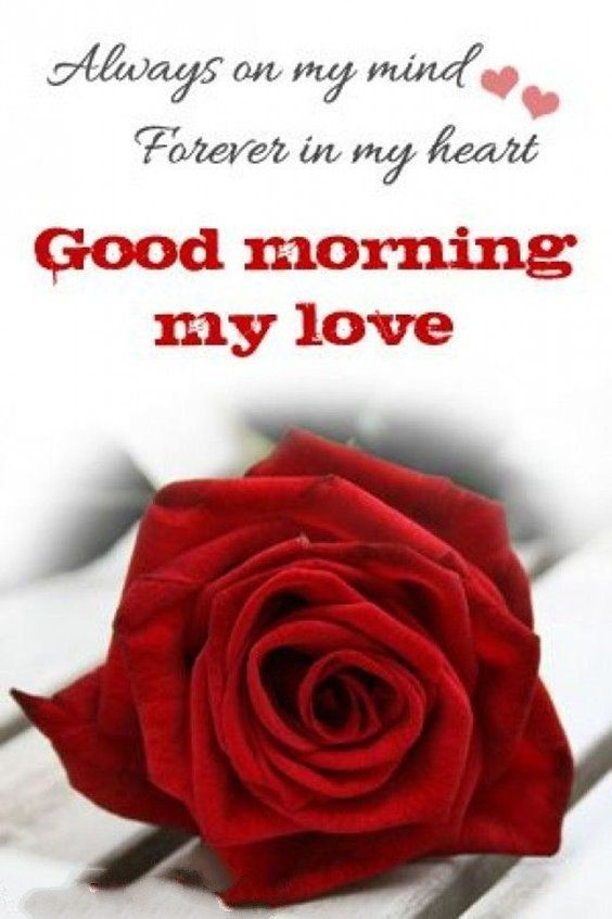 24 Good Morning Quotes For You To Love Life Morning Sweetheart Morning Love Good Morning Love