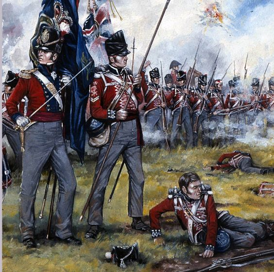 regiments at the battle of the boyne