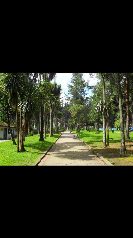 Perú - Voy al parque a pie para caminar
