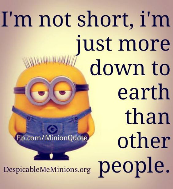 Image from http://despicablememinions.org/wp-content/uploads/2015/05/Funny-Minion-Quotes-Im-not-short.jpg.