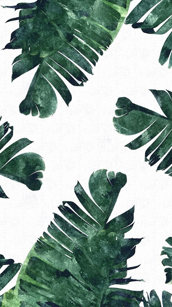 Tropical leaves, iPhone wallpapers and Tropical on Pinterest