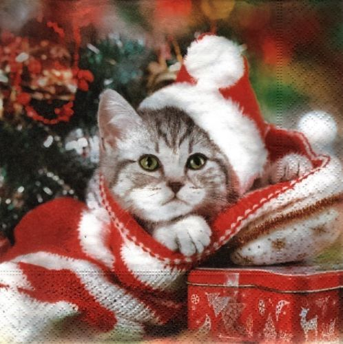 2-Servietten-Christmas-Kitten