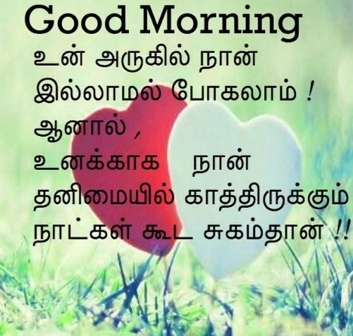 Top 100 Good Morning Images In Tamil Pics Good Morning Tamil Kavithai Good Morning Quotes Flirty Good Morning Quotes Morning Quotes Funny