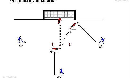 Entrenamiento De Velocidad Y Reacción Para Porteros Porteros Trabajos Prácticos Rubens Valenzuela Preparación Fis Portero Portero De Futbol Entrenamiento