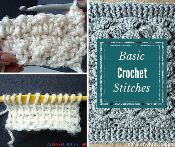 Basic crochet stitches, Crochet stitches and Stitches on Pinterest