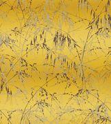 Wallpaper | Shop Designer Wallpapers | Jane Clayton