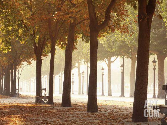 France, Paris, Champs Elysees