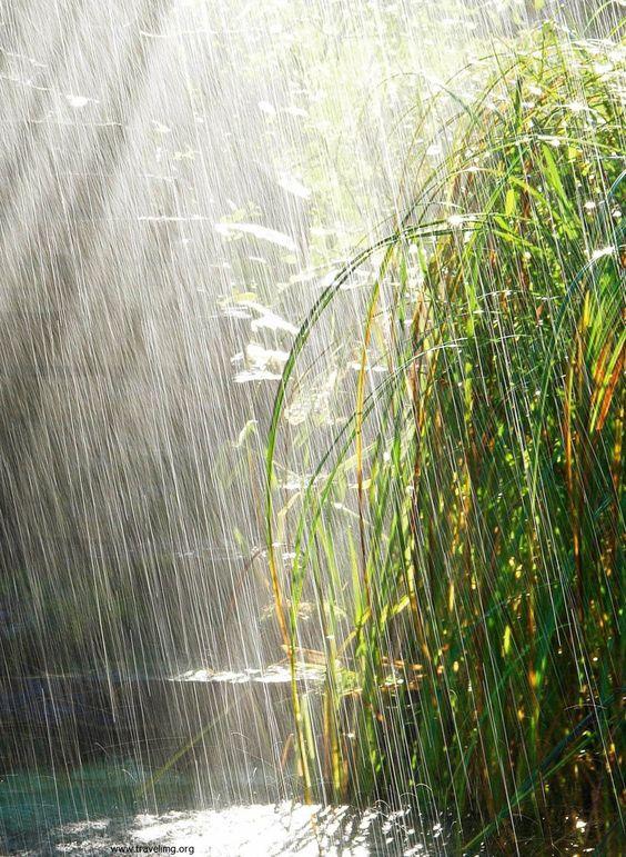 Aah, cleansing, refreshing rain.