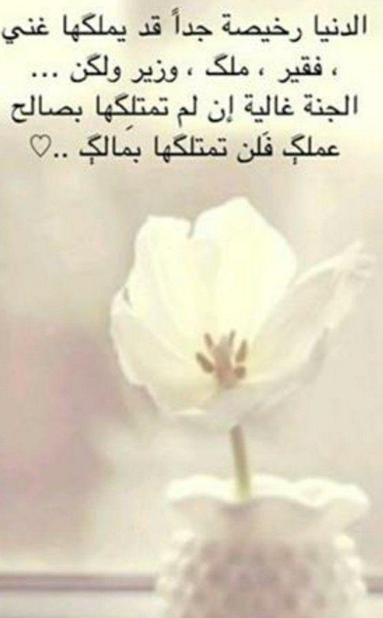 Pin By Fatima On حكم و اقوال