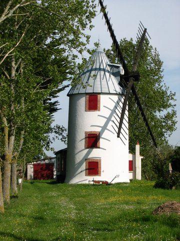 Moulin marais - Vendée